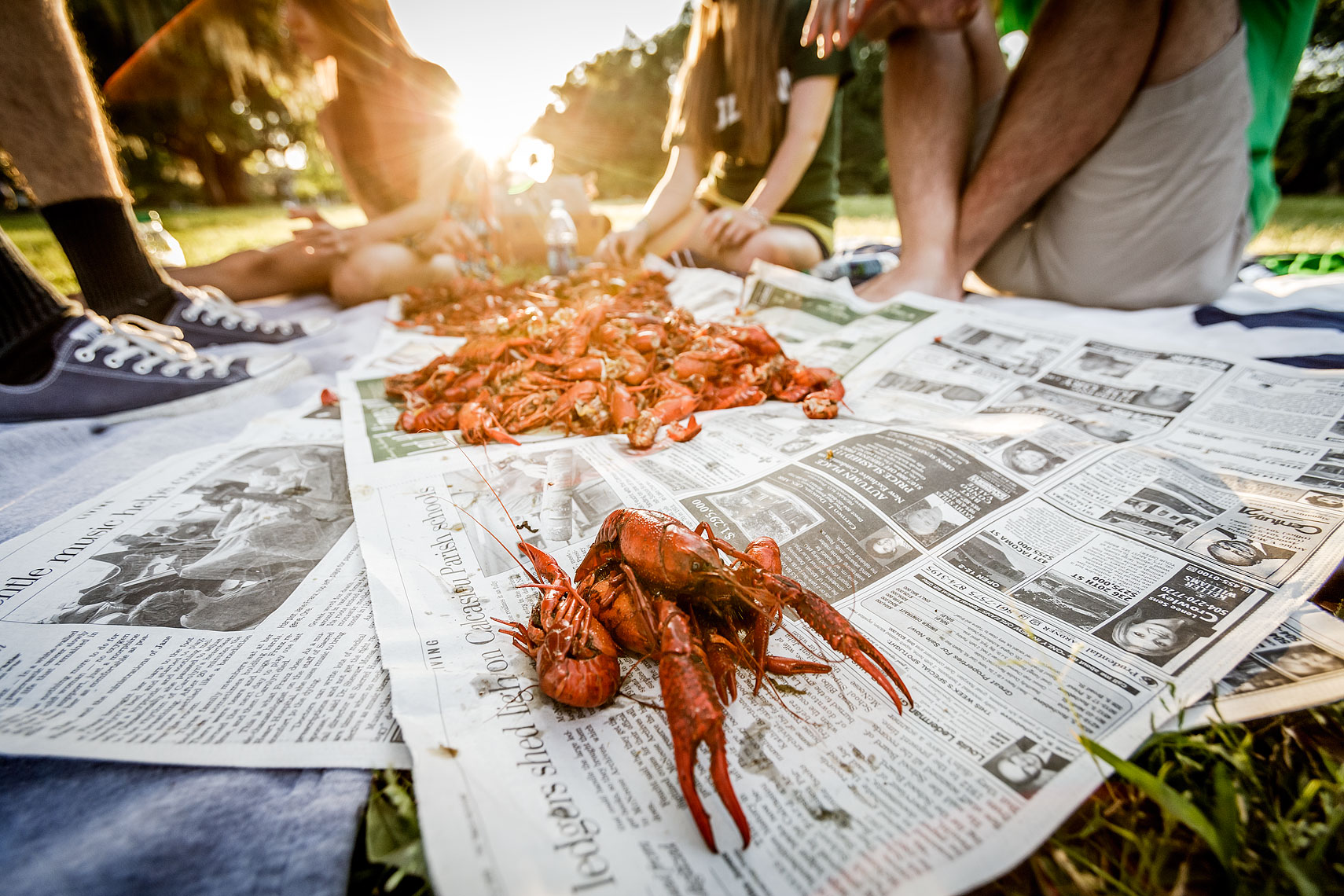 Boiled Crawfish at Audubon Park